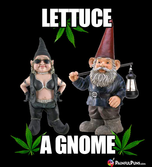 Garden Gnomes in Pot Leaves: Lettuce a Gnome