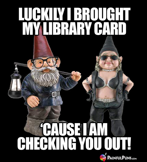 Luckily I brought my library card 'cause I am checking you out!