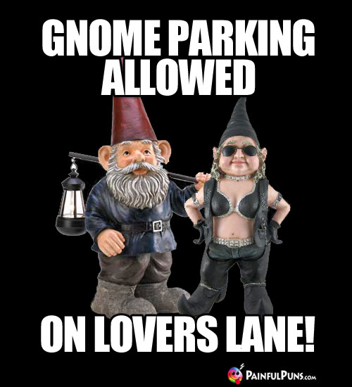 Gnome Parking Allowed on Lovers Lane!