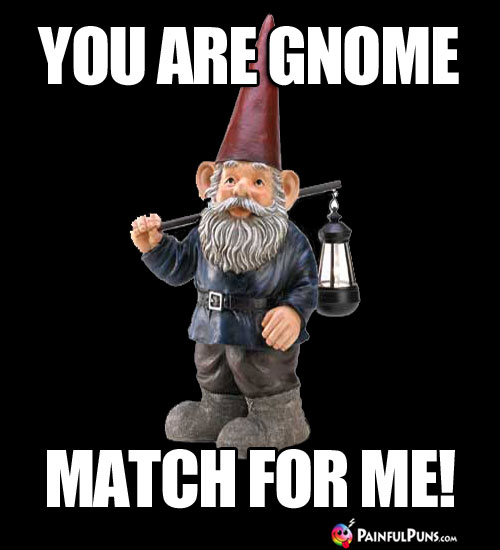 You are gnome match for me!