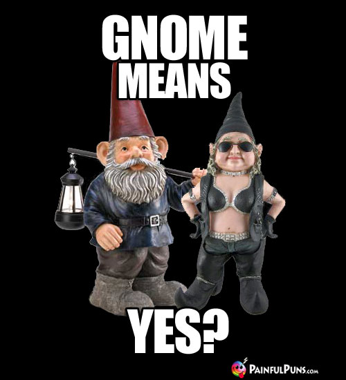 Gnome Means Yes?