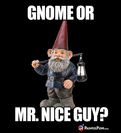 Gnome or Mr. Nice Guy?