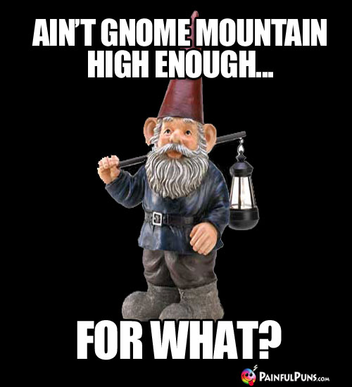 Ain't Gnome Mountain High Enough... For What?