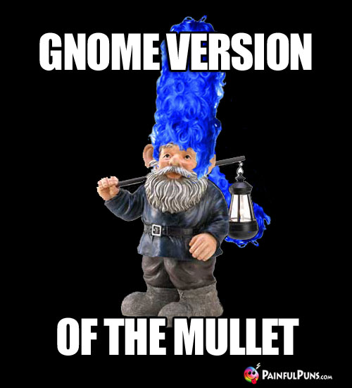 Gnome Version of the Mullet