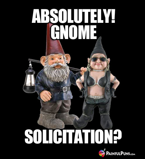 Absolutely! Gnome Solicitation?