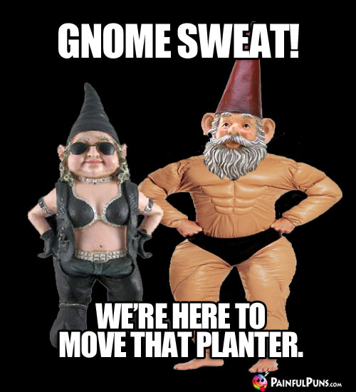 Gnome Sweat! We're here to move that planter.