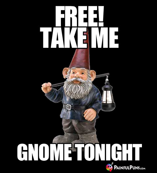 FREE! Take me gnome tonight