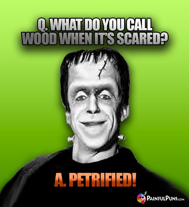 Q. What do you call wood when it's scared? A. Petrified!