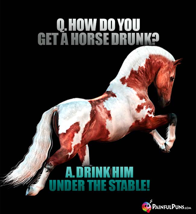 Q. How do you get a horse drunk? A. Drink him under the stable!