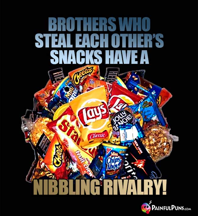 Junkfood Says: Brothers who steal each toher's snacks have a nibbling rivalry!