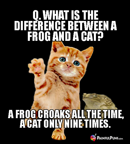 Q. What is the difference between a frog and a cat? A. A frog croaks all the time, a cat only nine times.