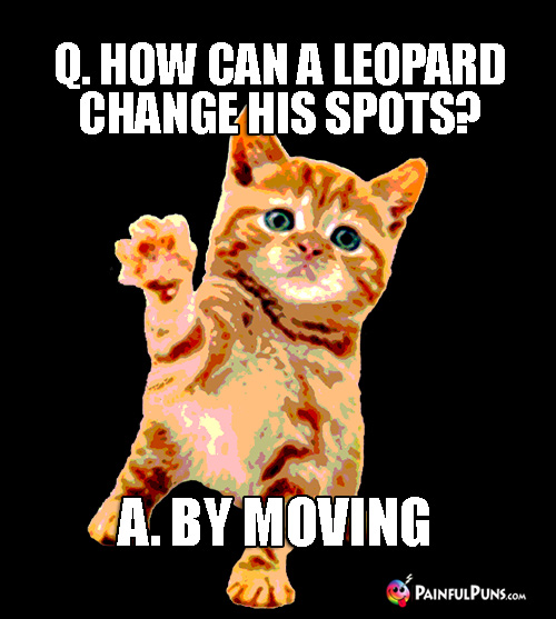 Animal Pun: Q. How can a leopard change his spots? A. By Moving