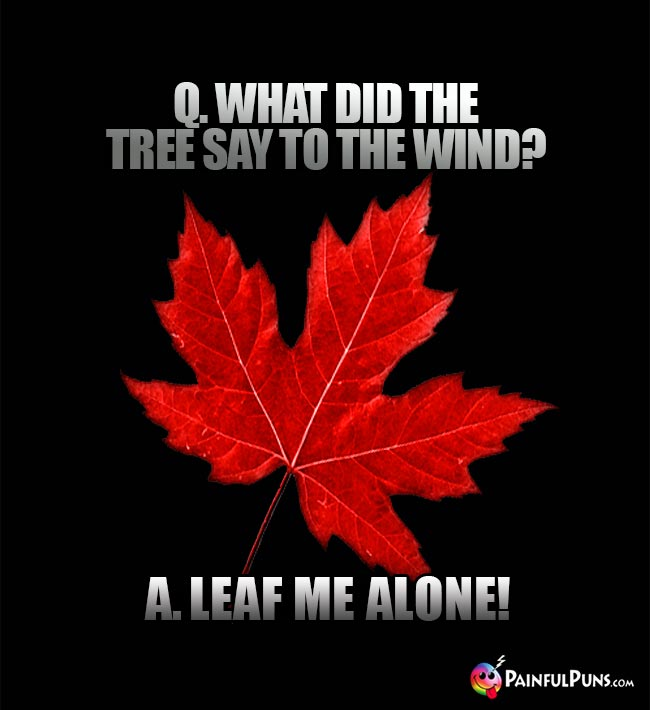 Q. What did the tree say to the wind? A. Leaf me alone!