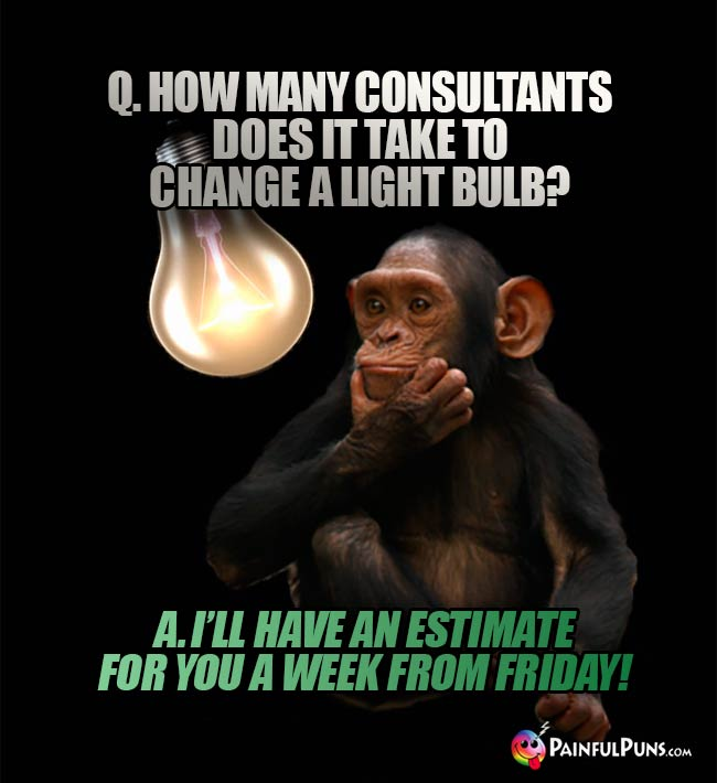 Q. How  many consultants does it take to change a light bulb? A. I'll have an estimate for you a week from Friday!