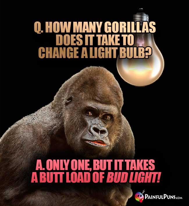 Q. How many gorillas does it take to change a light bulb? A. One one, but it takes a butt load of Bud Light!