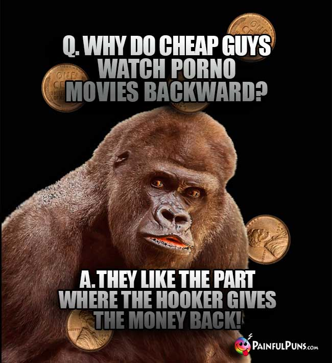 Gorilla Asks: Why do cheap guys watch porno movies backward? A. they like the part where the hooker gives the money back!