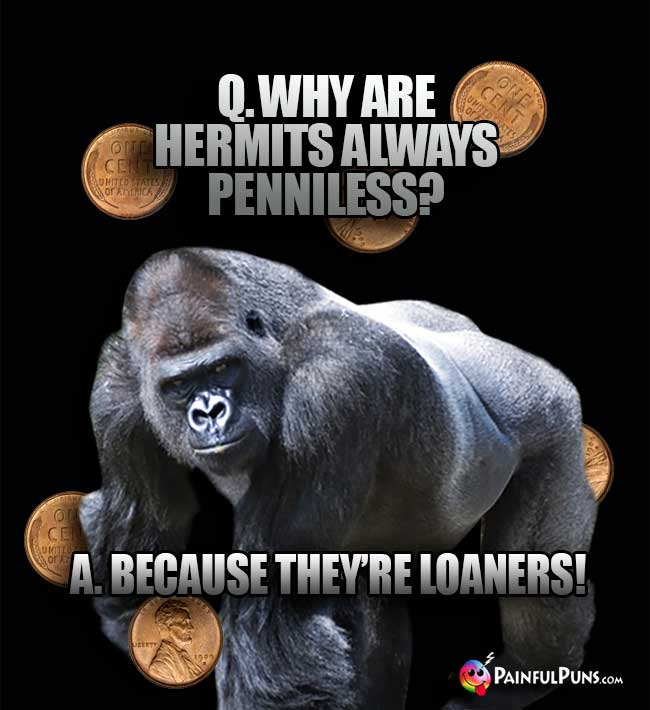Gorilla Asks: Why are hermits always penniless? A. Because they're loaners!