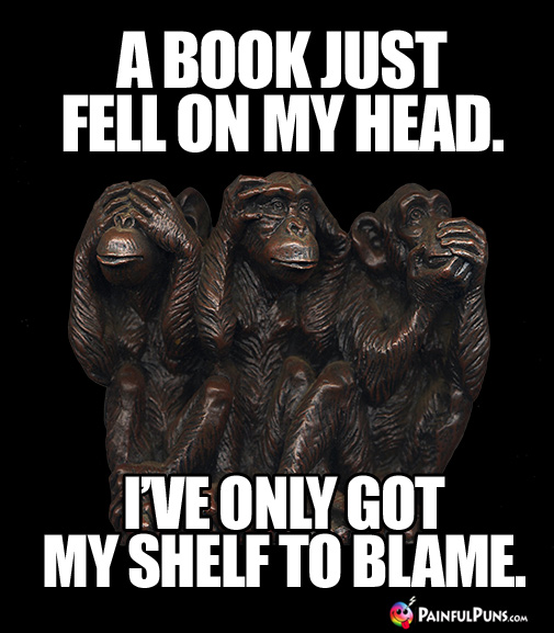 Groaner: A Book Just Fell On My Head. I've Only Got My Shelf To Blame.
