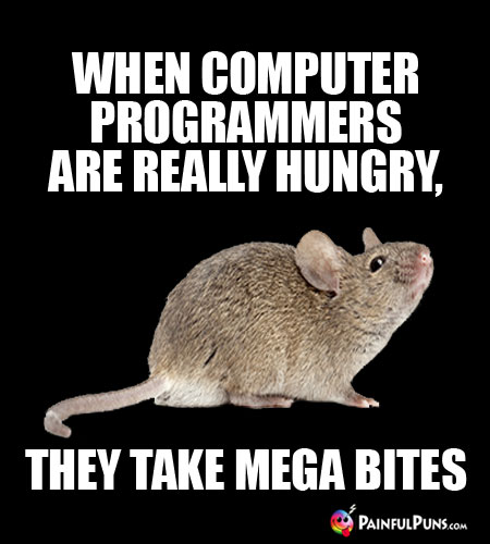 When computer programmers are really hungry, they take mega bites.
