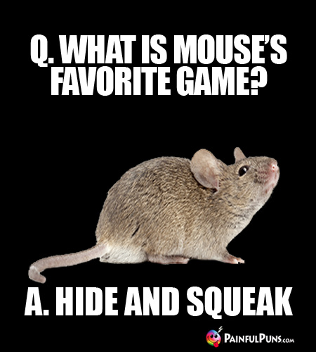 Q. What is a mouse's favorite game? A. Hide and Squeak