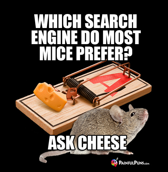 Which search engine do most mice prefer? Ask Cheese