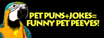 Pet Puns + Jokes = Funny Pet Peeves