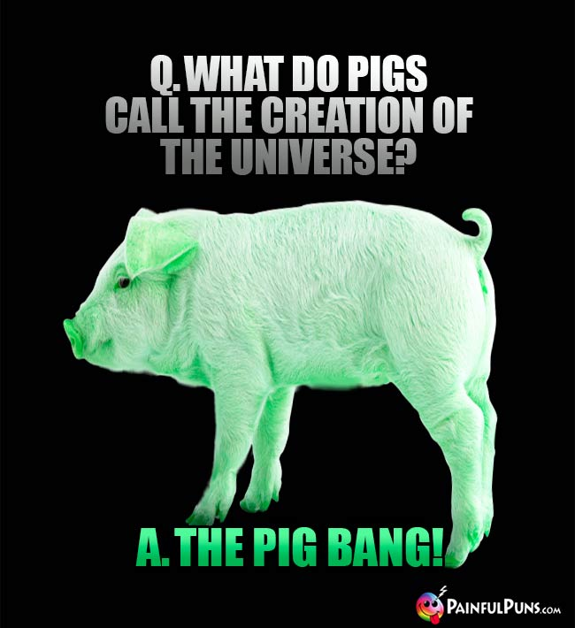 Q. What do pigs call the creatoin of the universe A. The Pig Bang!