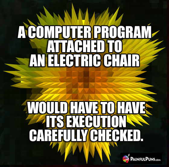 A computer program attached to an electric chair would have to have its execution carefully checked.