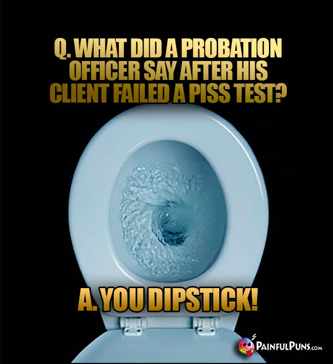 Q. What did a probation officer say after his client failed a piss test? A. You dipstick!