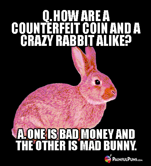 Q. How are a counterfeit coin and a crazy rabbit alike? A. One is bad money and the other is mad bunny.