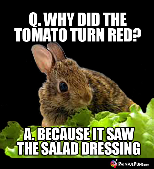 Q. Why did the tomato turn red? A. Because it saw the the salad dressing.