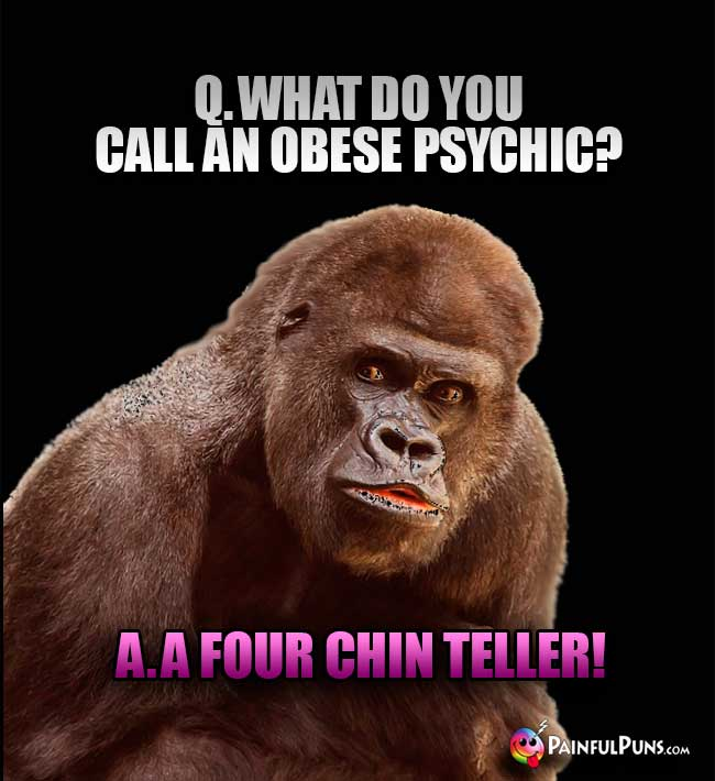 Q. What do you call an obese psychic? A. A four chin teller!