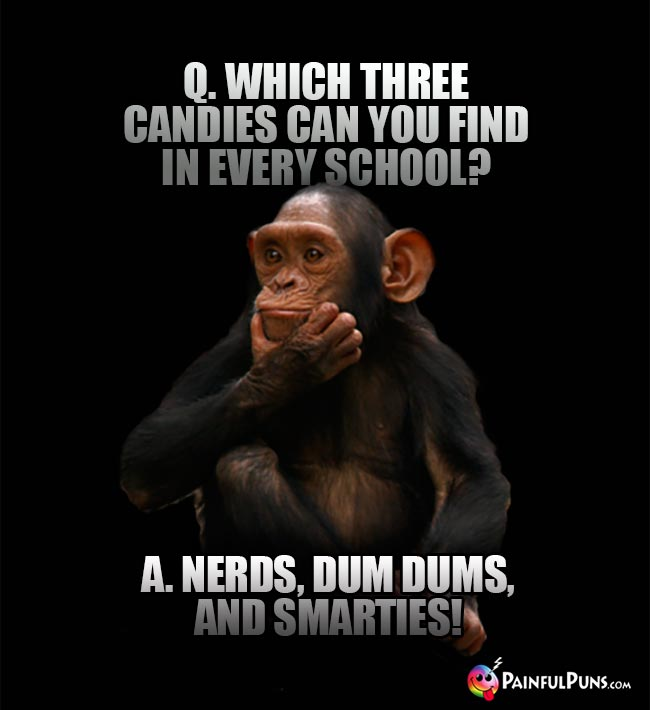 Q. Which three candies can you find in every school? A. Nerds, Dum Dums, and Smarties!