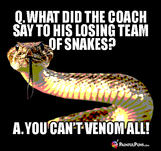 Q. What Did the Coach Say to His Losing Team of Snakes? A. You Can't Venom All!
