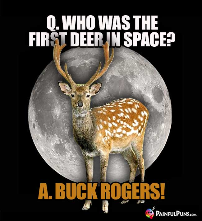 Q. Who was the first deer in space? A. Buck Rogers!