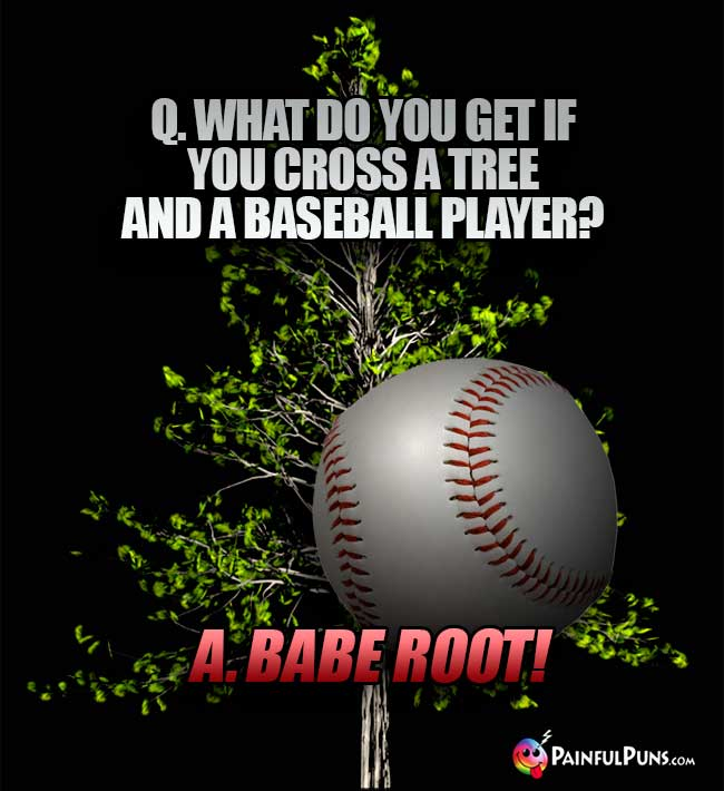 Q. What do you get if you cross a tree and a baseball player? A. Babe Root!