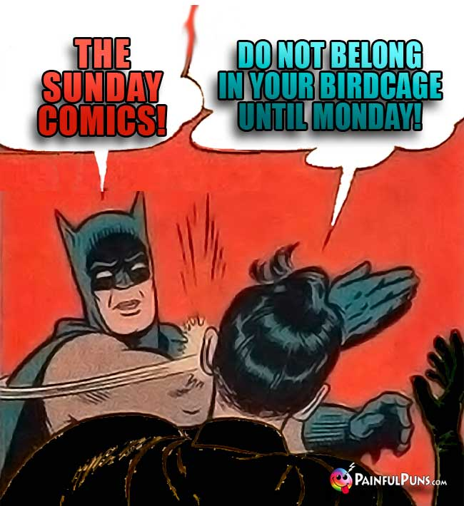 Batman Says: The Sunday comic do not belong in your birdcage until Monday!