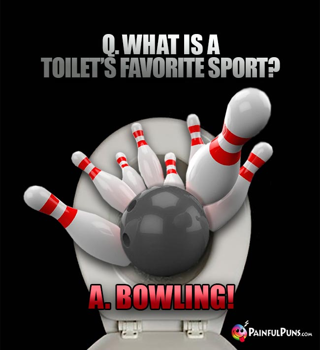 Q. What is a toilet's favorite sport? A. Bowling!