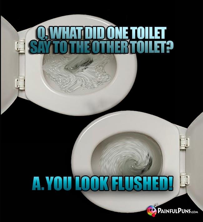 Bathroom Air Freshener >> Toilet Jokes, Crapper Puns, Commode Humor 2 | PainfulPuns.com