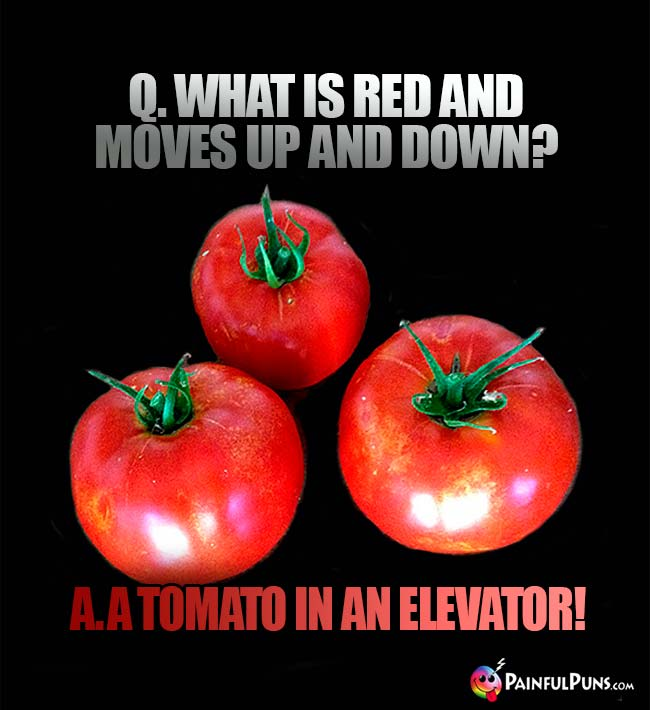 Q. What is red and moves up and down? A. A tomato in an elevator!