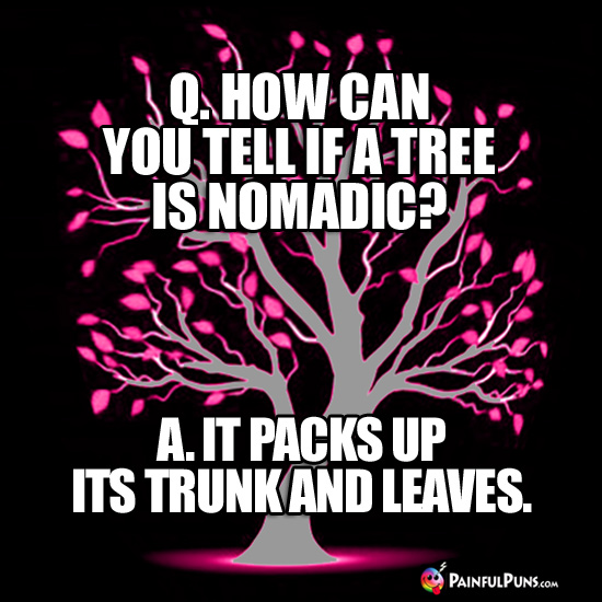 Q. How can you tell if a tree is nomadic? A. It packs up its trunk and leaves.