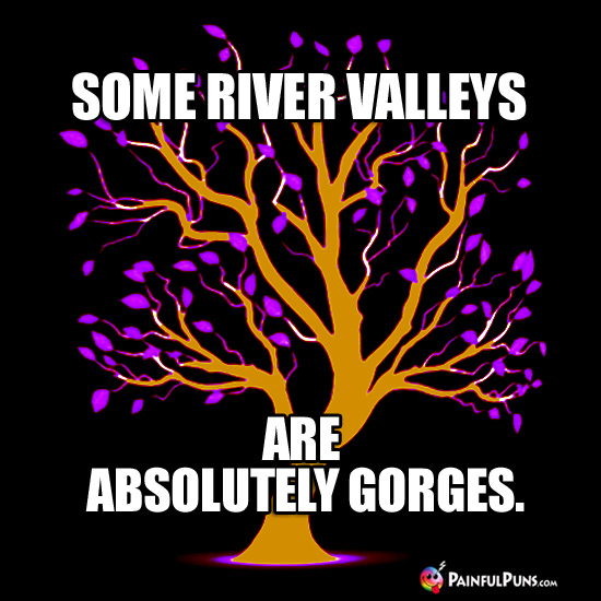 Some River Valleys Are Absolutely Gorges.