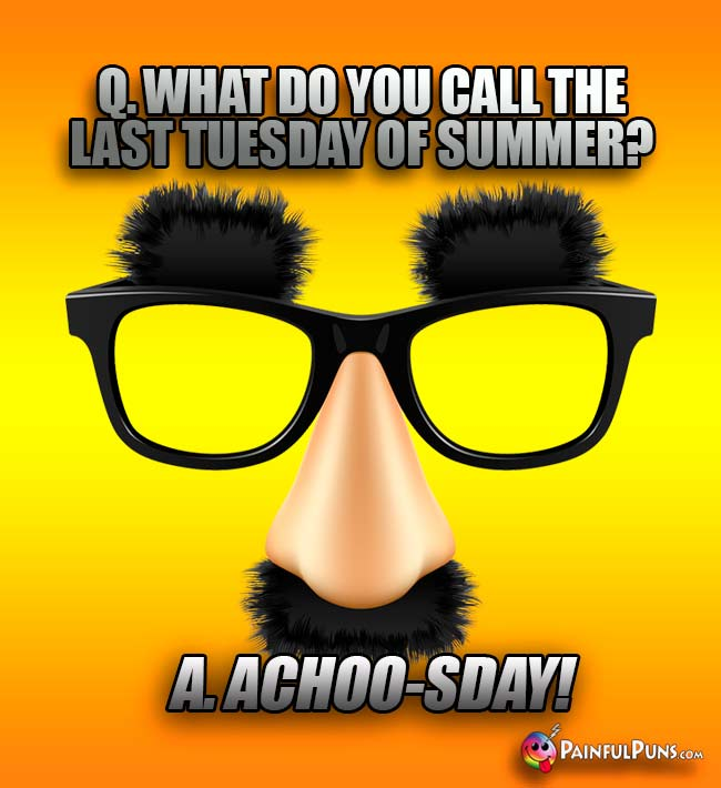 Q. What do you call the last Tuesday of summer? A. Achoo-sDay!