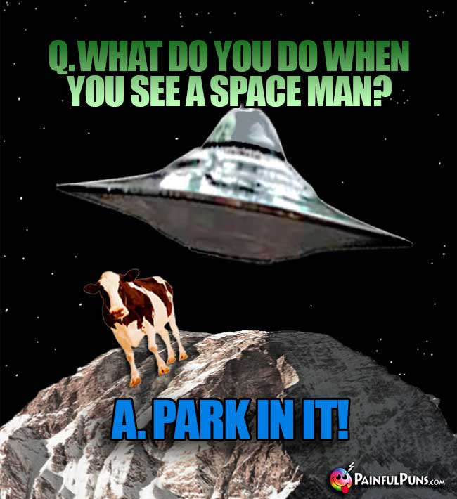 Q. What do you do when you see a space man? A. Park In It!