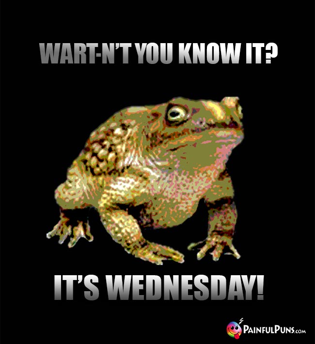 Toad Says: Wart-n't you know it? It's Wednesday!