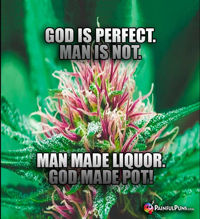 Bud Says: God is perfect. Man is not. Made made liquor. God made pot!