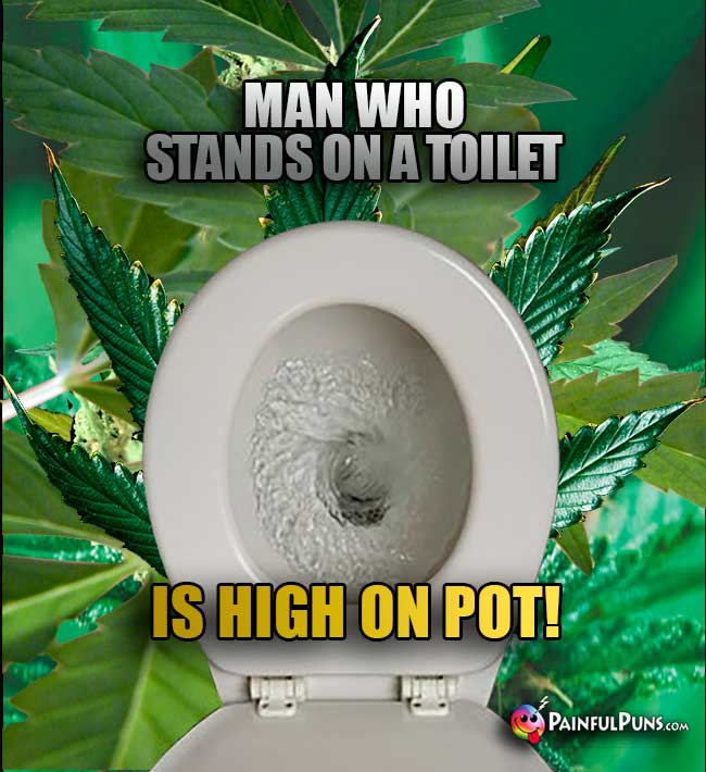 Man Who Stands On a Toilet is High ON Pot!