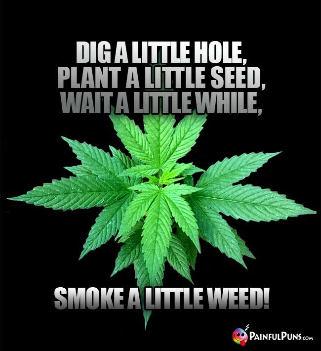 Pot Poetry: Dig a little hole, plant a little seed, wait a little while, smoke a little weed!