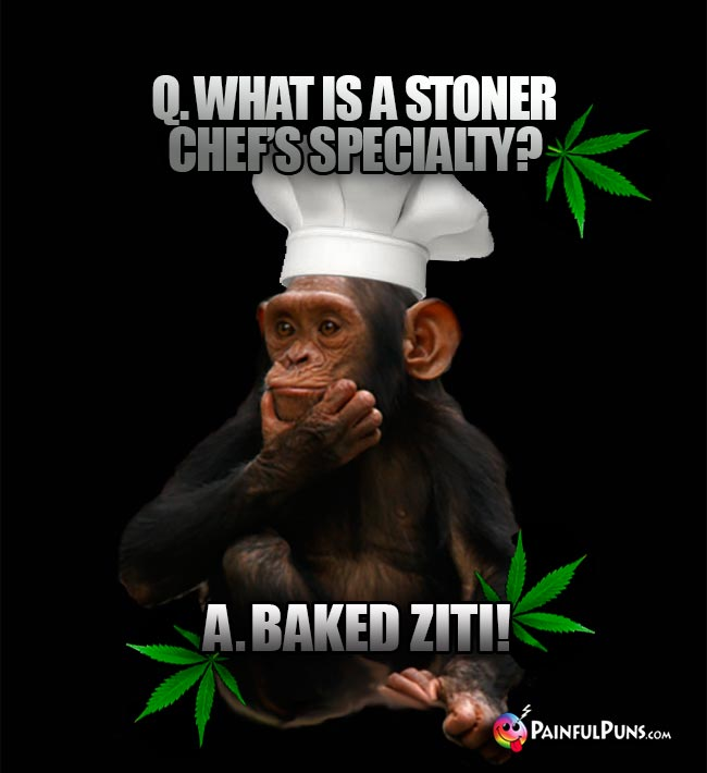 Chimp Chef Asks: What is a stoner chef's specialty? A. Baked Ziti!